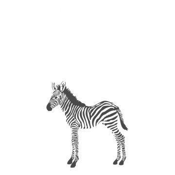 fototapet zebraer sort og hvidt