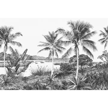 fototapet landskab med palmer sort og hvidt